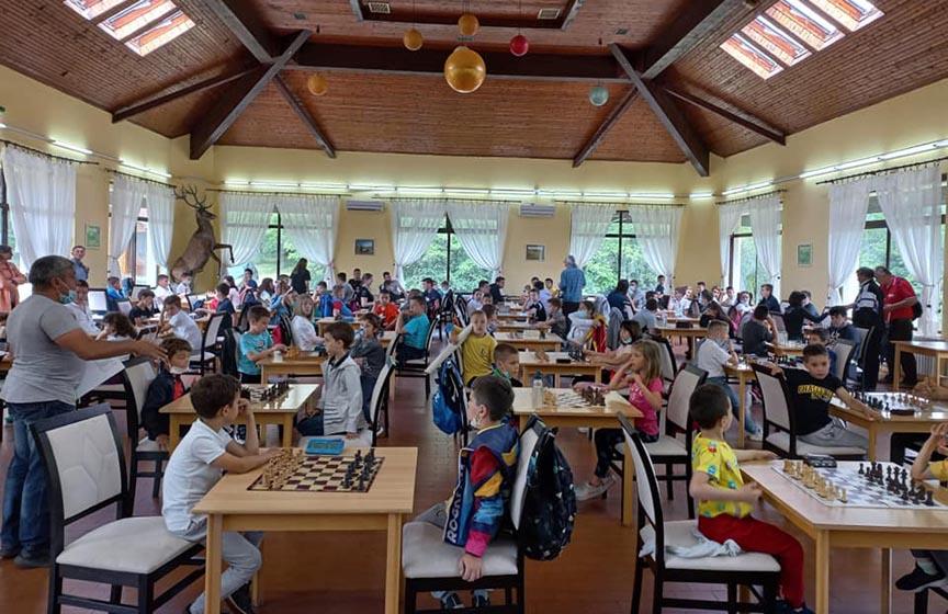 šah klub aljehin, rapid turnir na cardaku