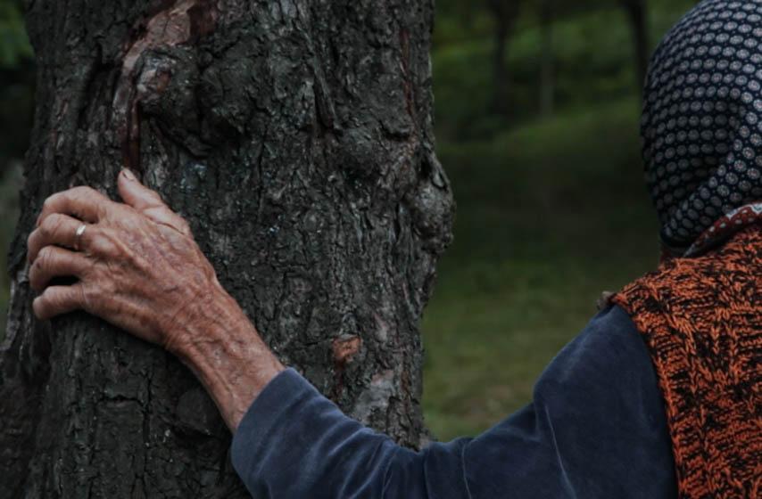 Maja Novaković, oskar, dokumentarac