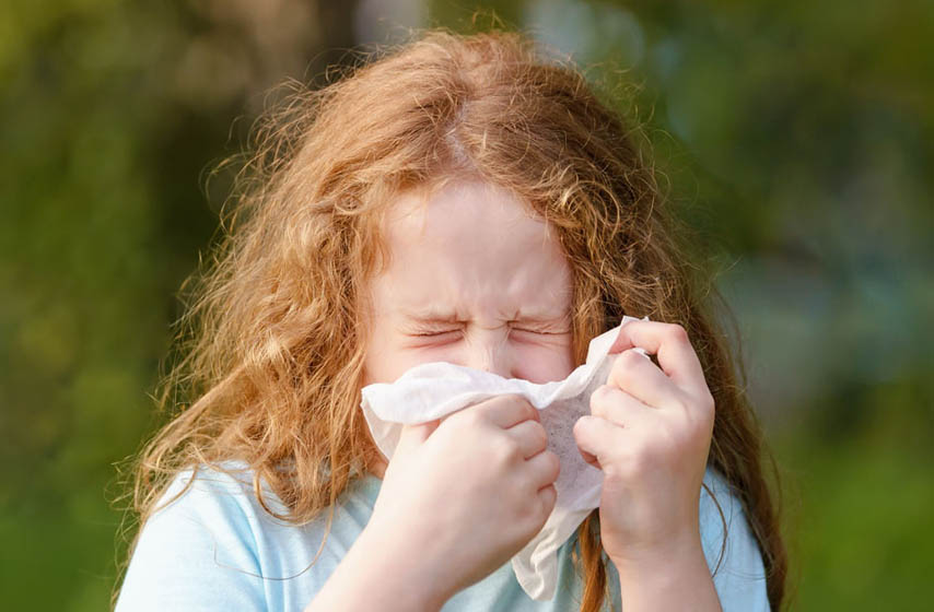 Kako lečiti alergiju, alergija na polen, kako lečiti alergiju na polen, ambrozija, alergija na ambroziju