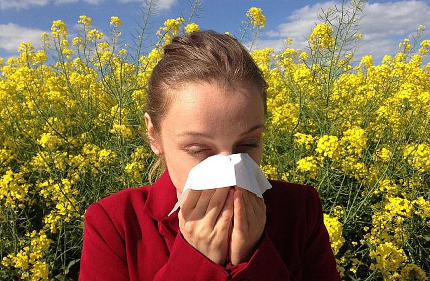 polen, koncentracija polena u vazduhu