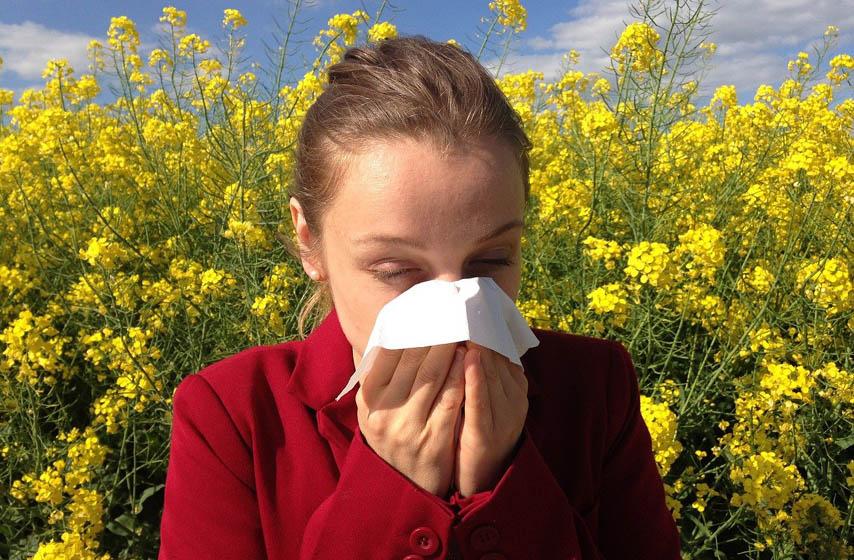 alergija, zdravlje, najnovije vesti
