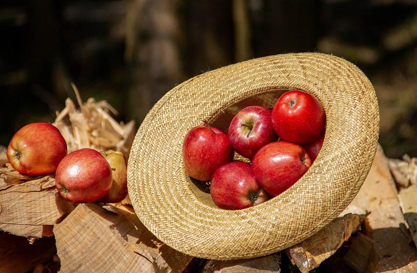 da li treba jesti jabuke svaki dan