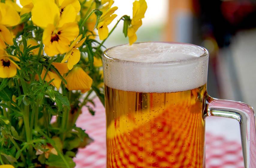 pivo, struja