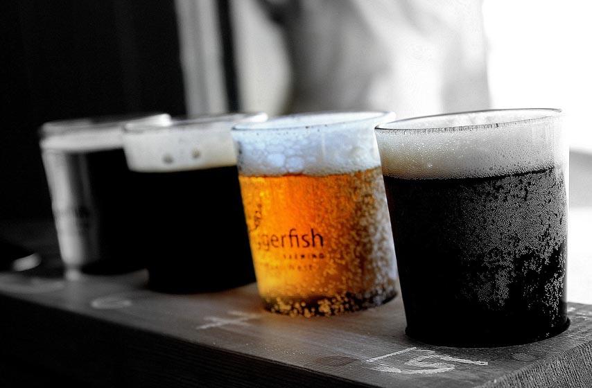 pivo, organizam