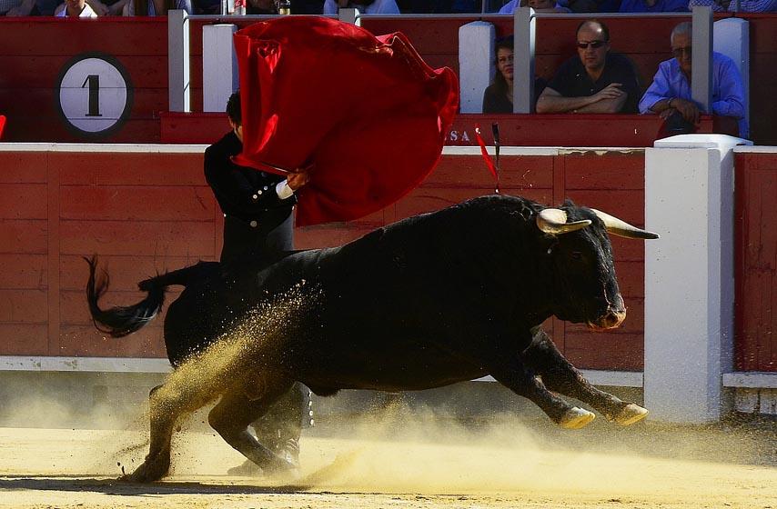 matadori, borbe s bikovima