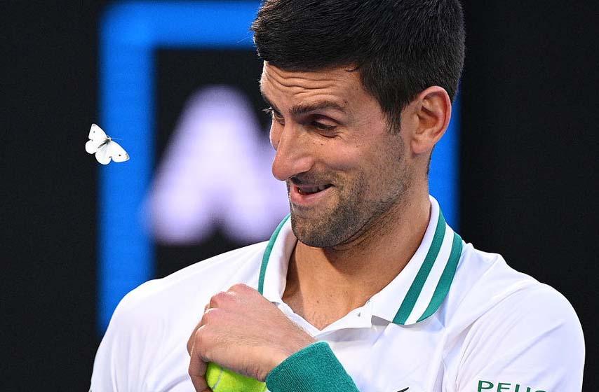 australijan open, novak djokovic, tenis, sport
