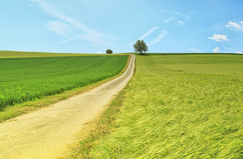 licitacija drzavnog poljoprivrednog zemljista