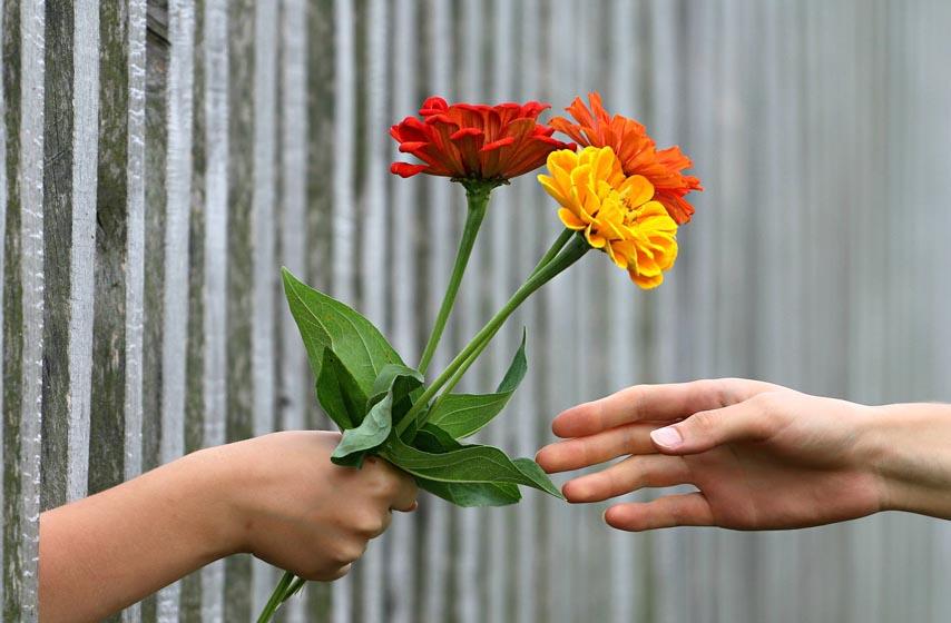 Koje cveće kada treba pokloniti