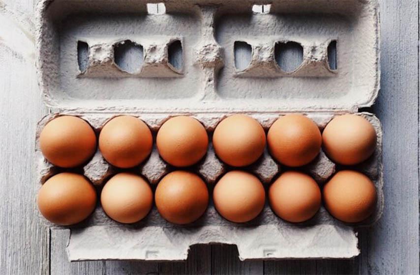 kartonske kutije od jaja treba odmah baciti, kartoni za jaja, kartonske kutije za jaja