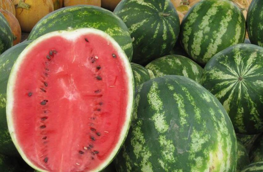 Kako izabrati najslađu lubenicu, lubenica, trik