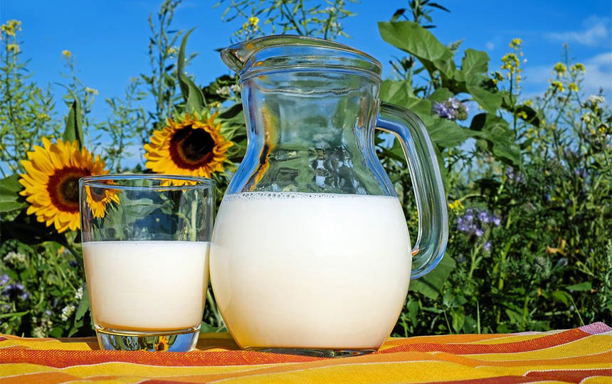 kontrola mlecnih proizvoda