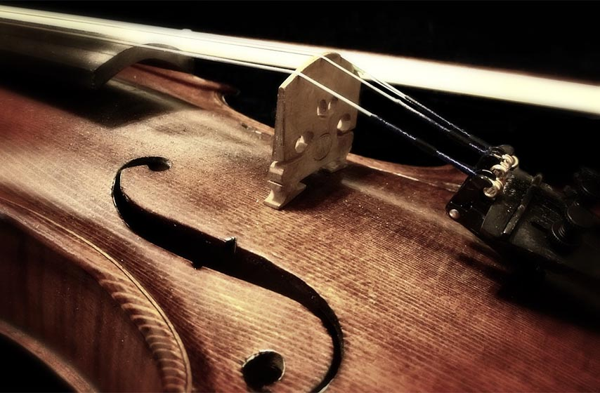 sabor violinista srbije, sabor pranjani, pranjani