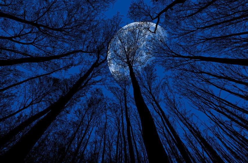 plavi mesec, horoskop