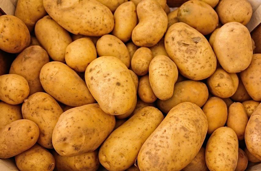 Kako se pravilno čuva krompir
