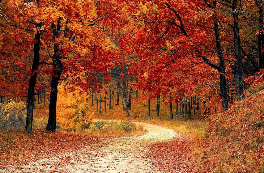 jesen stize 22. septembra, kada stize jesen
