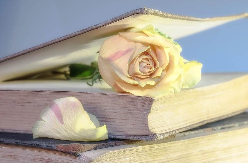 noc knjizevnosti pariz, noc knjizevnosti, knjizevnost, pariz, kultura, vesti iz kulture, vesti iz sveta, najnovije vesti, knjiga