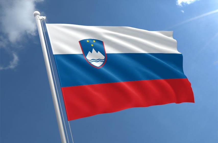slovenija odustaje od avio kompanije, air serbia