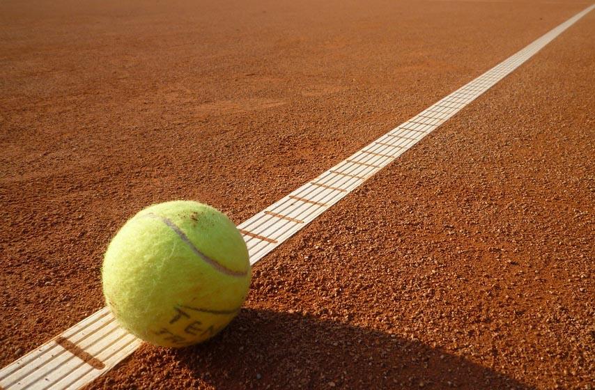 novak djoković, medvedev, tenis, sport