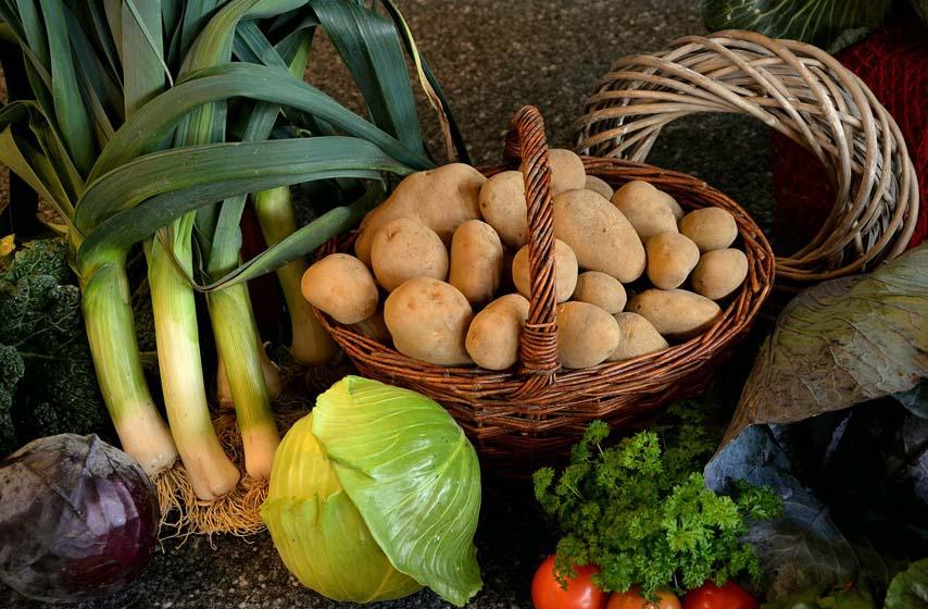 krompir, pomfrit, dositej obradovic