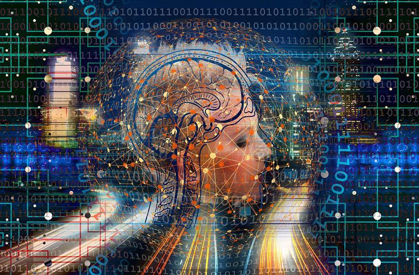 činjenice o mozgu, mozak