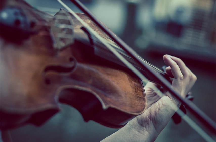 joca vasic, violinista, sabor violine pranjani, pranjani