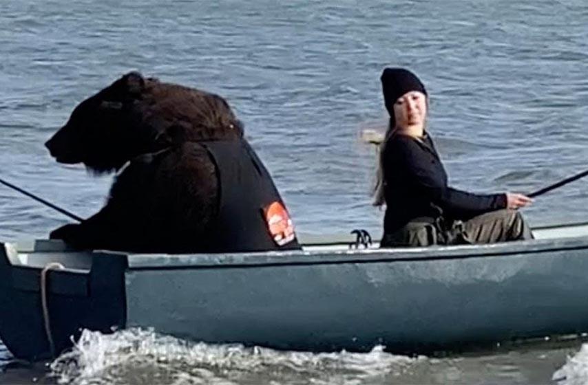 medved, devojka, medved i devojka, pecanje